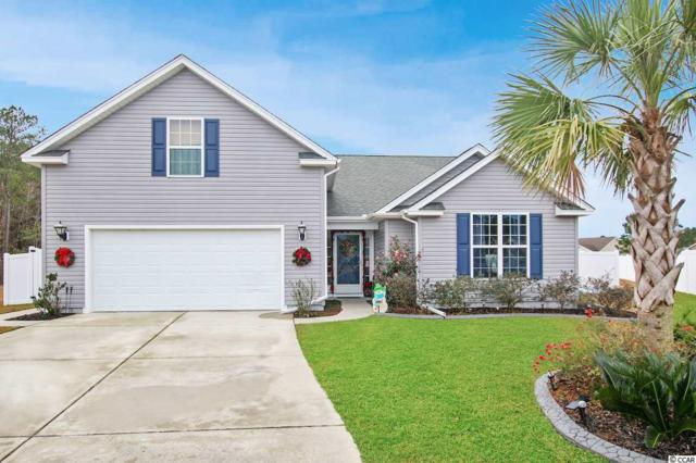 508 Coopers Hawk Ct., Myrtle Beach, SC 29588 (MLS #1824971) :: The Trembley Group