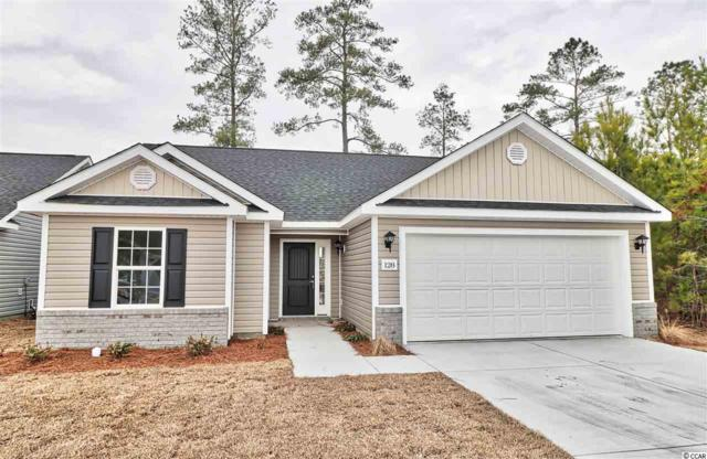 Lot 30 Hamilton Way, Conway, SC 29526 (MLS #1824993) :: The Litchfield Company