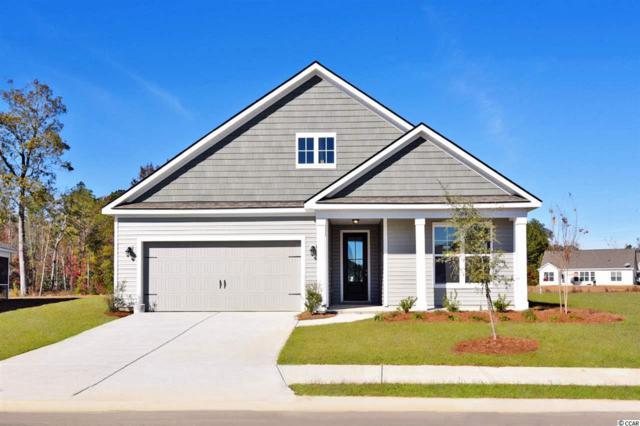 153 Castaway Key Dr., Pawleys Island, SC 29585 (MLS #1825437) :: Jerry Pinkas Real Estate Experts, Inc