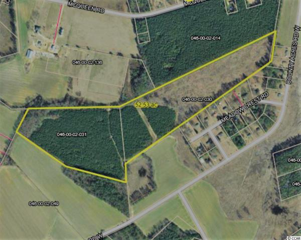 531 Bounty Acres Rd., Bennetsville, SC 29512 (MLS #1900056) :: The Hoffman Group