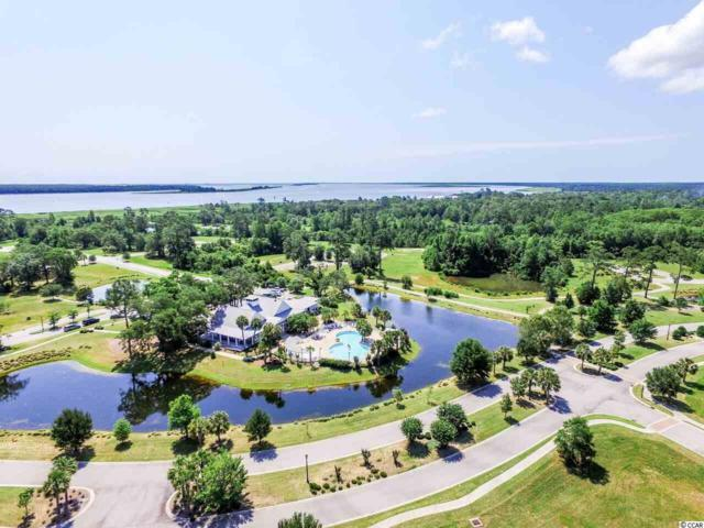 171 Commanders Island Rd., Georgetown, SC 29440 (MLS #1900066) :: The Lachicotte Company