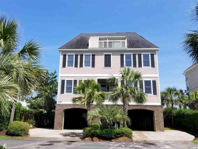 230 Sea Oats Circle, Pawleys Island, SC 29585 (MLS #1900192) :: The Hoffman Group