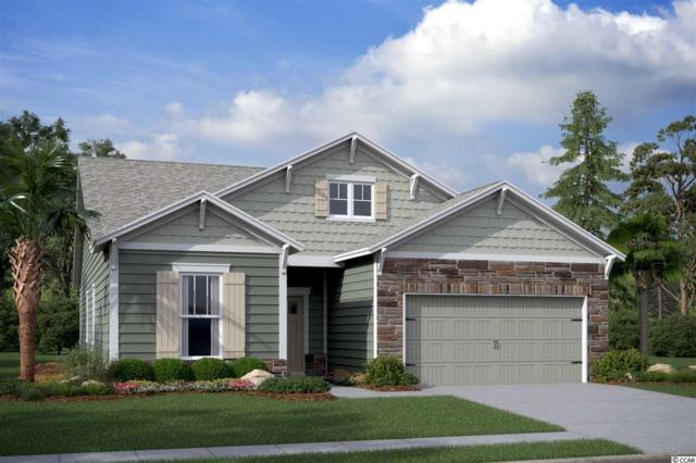902 Culbertson Ave., Myrtle Beach, SC 29577 (MLS #1900271) :: Right Find Homes