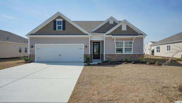 5442 Longhorn Dr., Myrtle Beach, SC 29588 (MLS #1900282) :: The Trembley Group