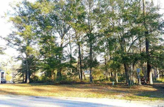185 Preservation Dr., Myrtle Beach, SC 29572 (MLS #1900301) :: The Litchfield Company