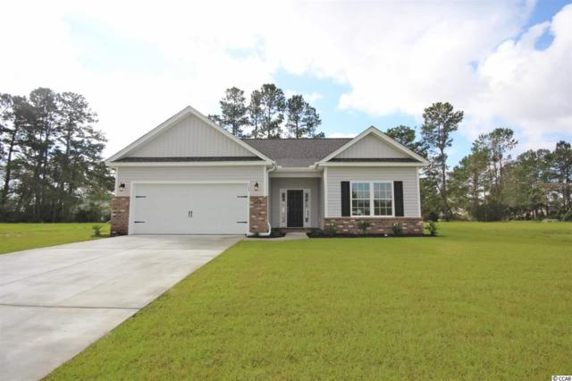 124 Palm Terrace Loop, Conway, SC 29526 (MLS #1900782) :: Right Find Homes