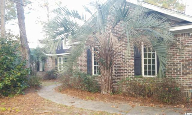 160 Red Tail Hawk Loop, Pawleys Island, SC 29585 (MLS #1901047) :: Matt Harper Team