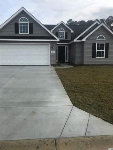 4037 Comfort Valley Dr., Longs, SC 29568 (MLS #1901058) :: The Trembley Group