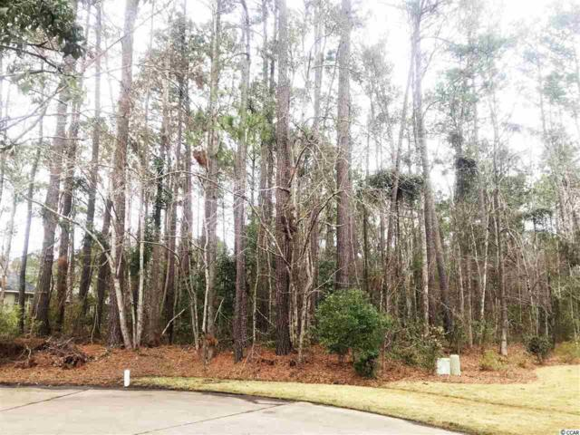 103 Lumber Ct., Myrtle Beach, SC 29588 (MLS #1901158) :: Right Find Homes