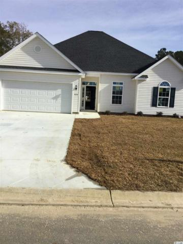 91 Palmetto Green Dr., Longs, SC 29568 (MLS #1901173) :: The Trembley Group