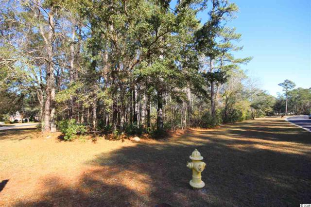 Lot 109 Woodstork Ln., Georgetown, SC 29440 (MLS #1901179) :: The Greg Sisson Team with RE/MAX First Choice