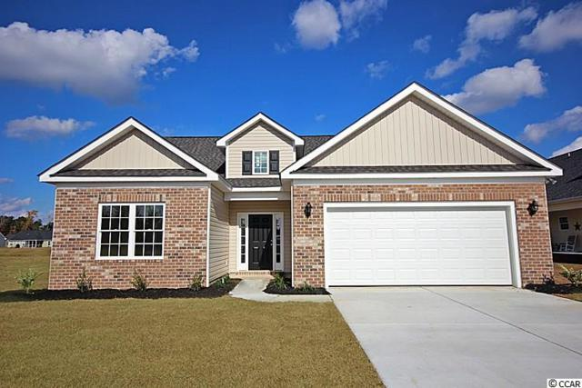 123 Palm Terrace Loop, Conway, SC 29526 (MLS #1901328) :: Right Find Homes