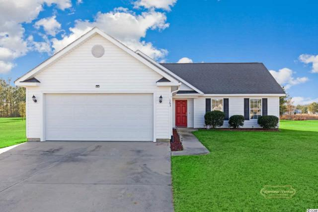 163 Cat Tail Bay Dr., Conway, SC 29527 (MLS #1901448) :: Right Find Homes