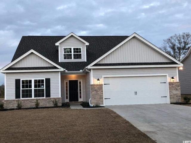 116 Palm Terrace Loop, Conway, SC 29526 (MLS #1901463) :: The Litchfield Company