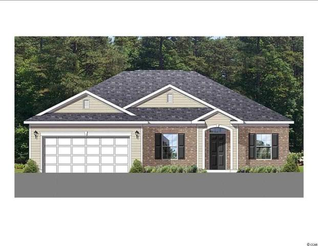 441 Hillsborough Dr., Conway, SC 29526 (MLS #1901479) :: The Greg Sisson Team with RE/MAX First Choice