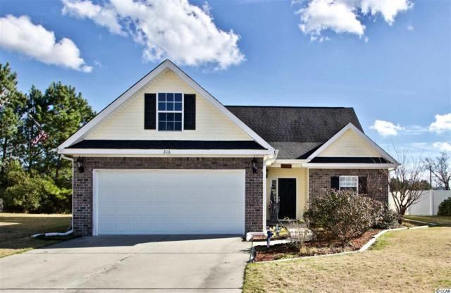226 Seagrass Loop, Myrtle Beach, SC 29588 (MLS #1901494) :: The Litchfield Company