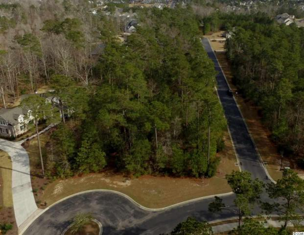 147 Camp Hill Circle, Murrells Inlet, SC 29576 (MLS #1901536) :: The Homes & Valor Team