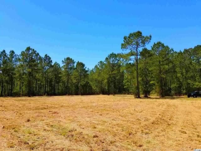 Lot 2 Samworth Loop, Georgetown, SC 29440 (MLS #1901868) :: The Greg Sisson Team with RE/MAX First Choice