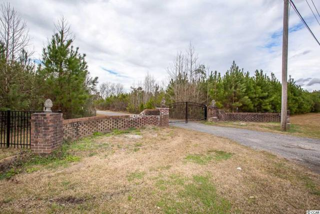 3979 Kent Rd., Andrews, SC 29510 (MLS #1901877) :: The Lachicotte Company
