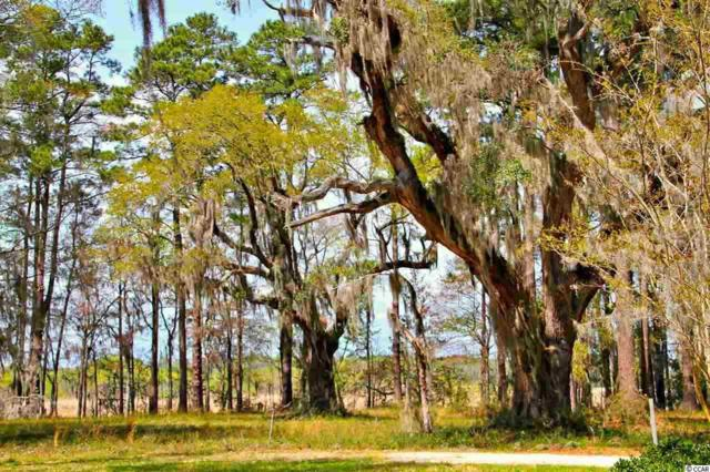 Lot A Tuckers Rd., Pawleys Island, SC 29585 (MLS #1902274) :: The Lachicotte Company