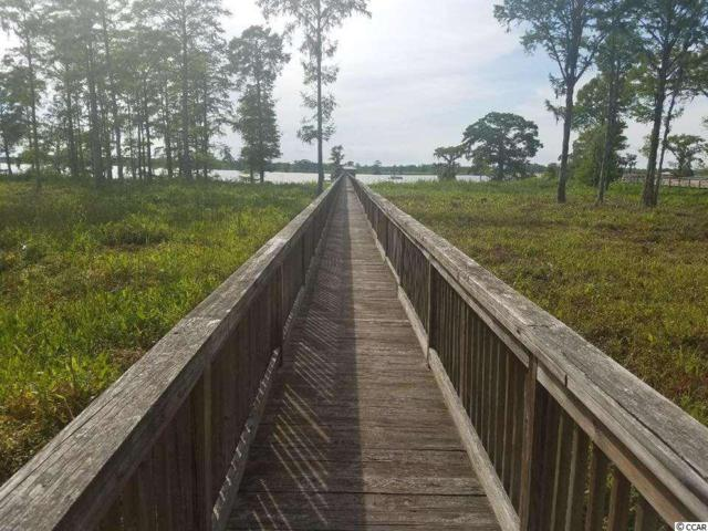 73 Rice Hope Ln., Pawleys Island, SC 29585 (MLS #1902366) :: James W. Smith Real Estate Co.