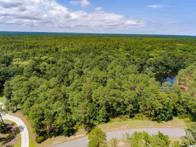 Lot 146 Ocean Lakes Loop, Pawleys Island, SC 29585 (MLS #1902733) :: The Hoffman Group