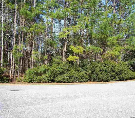 214 Duck Blind Trail, Myrtle Beach, SC 29588 (MLS #1902734) :: The Litchfield Company