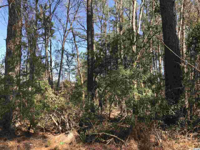 TBD Pee Dee Hwy., Conway, SC 29527 (MLS #1903045) :: Armand R Roux | Real Estate Buy The Coast LLC
