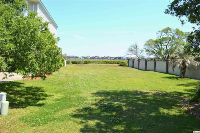283 Berry Tree Dr., Pawleys Island, SC 29585 (MLS #1903116) :: The Litchfield Company