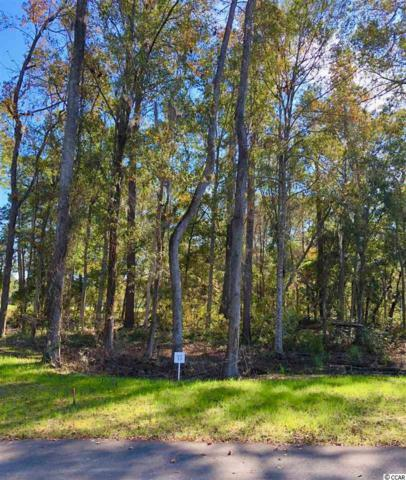 13 Northwoods Ct., Pawleys Island, SC 29585 (MLS #1903119) :: The Litchfield Company