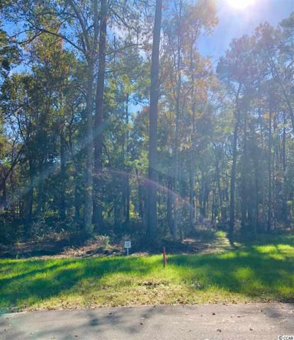 14 Northwoods Ct., Pawleys Island, SC 29585 (MLS #1903123) :: Right Find Homes