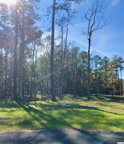 15 Northwoods Ct., Pawleys Island, SC 29585 (MLS #1903126) :: Right Find Homes