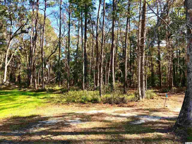 18 Northwoods Ct., Pawleys Island, SC 29585 (MLS #1903132) :: Right Find Homes