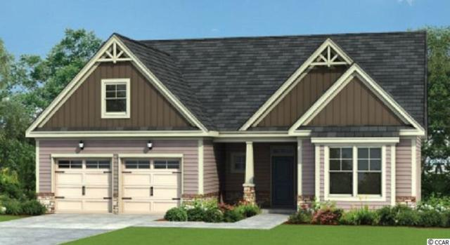 242 Board Landing Circle, Conway, SC 29526 (MLS #1903442) :: The Litchfield Company