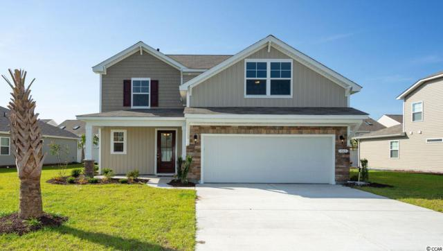 226 Star Lake Dr., Murrells Inlet, SC 29576 (MLS #1903481) :: The Lachicotte Company