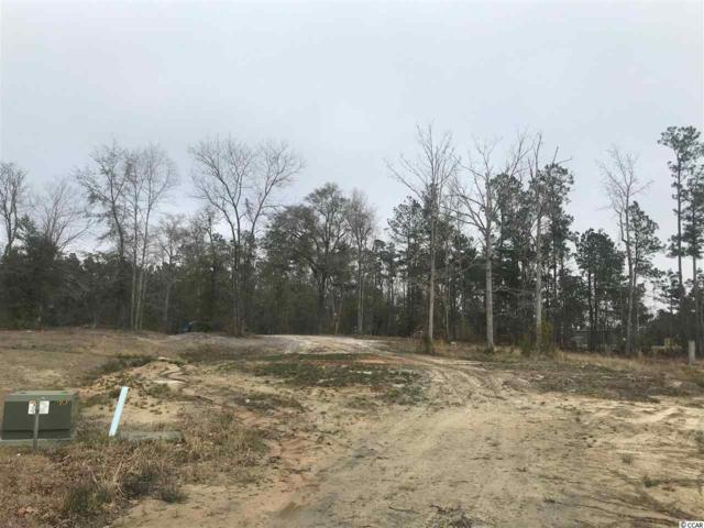 153 Clearwind Ct., Aynor, SC 29511 (MLS #1903842) :: The Hoffman Group