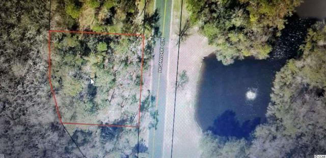 144 Highwood Circle, Murrells Inlet, SC 29576 (MLS #1904389) :: The Hoffman Group