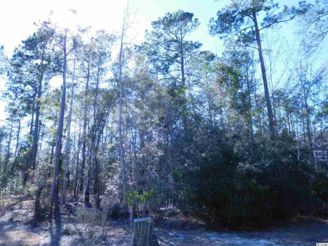 Lot 86 Woody Point Dr., Murrells Inlet, SC 29576 (MLS #1904841) :: The Hoffman Group