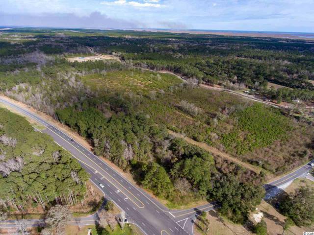10317 N Highway 17 North, McClellanville, SC 29458 (MLS #1905060) :: The Hoffman Group