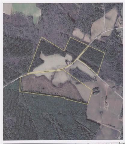 1576 Midway Rd., Hemingway, SC 29554 (MLS #1905261) :: The Hoffman Group