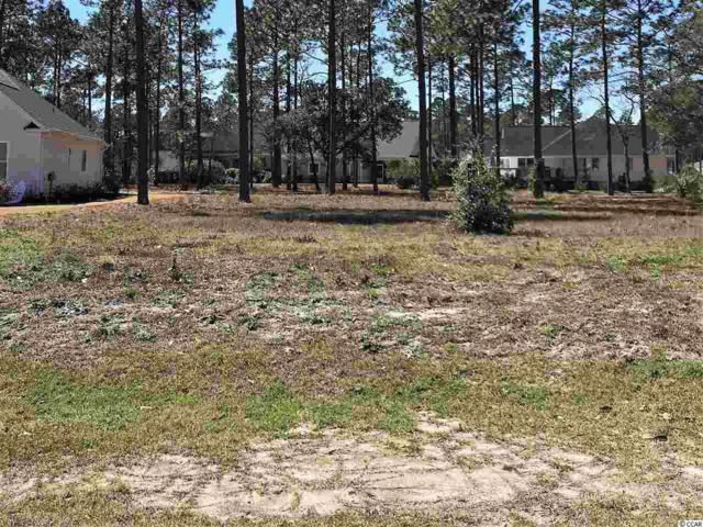 209 Planters Ridge Dr., Sunset Beach, NC 28468 (MLS #1905310) :: The Hoffman Group