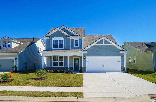 894 Berkshire Ave., Myrtle Beach, SC 29577 (MLS #1905505) :: The Hoffman Group