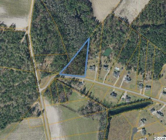 242 Cat Tail Bay Dr., Conway, SC 29527 (MLS #1905647) :: The Hoffman Group