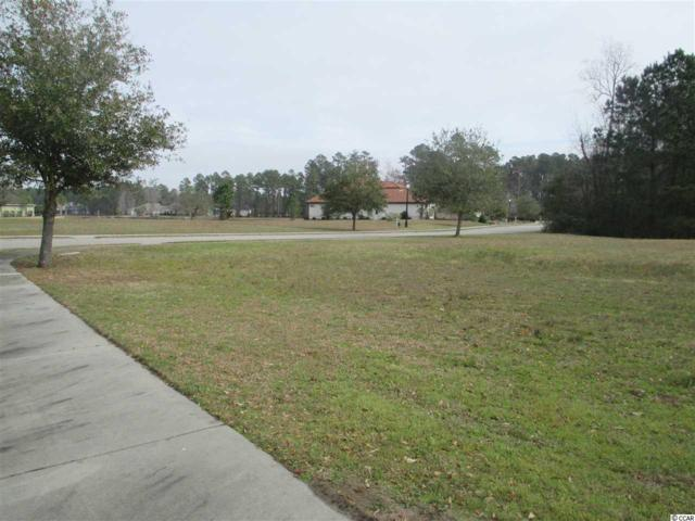 1408 Whooping Crane Dr., Conway, SC 29526 (MLS #1905898) :: Welcome Home Realty
