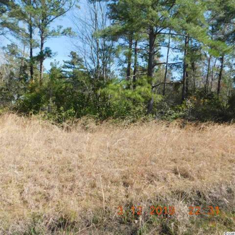 2074 Misty Morning Dr., Conway, SC 29527 (MLS #1905920) :: The Hoffman Group