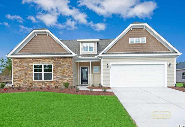 521 Hillsborough Dr., Conway, SC 29526 (MLS #1906007) :: The Hoffman Group