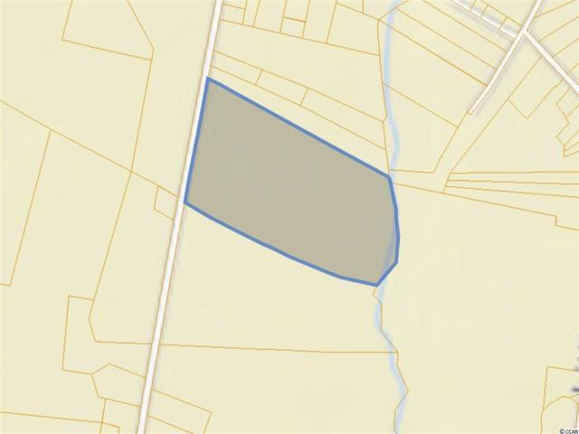 2511 Highway 646, Green Sea, SC 29545 (MLS #1906038) :: The Hoffman Group
