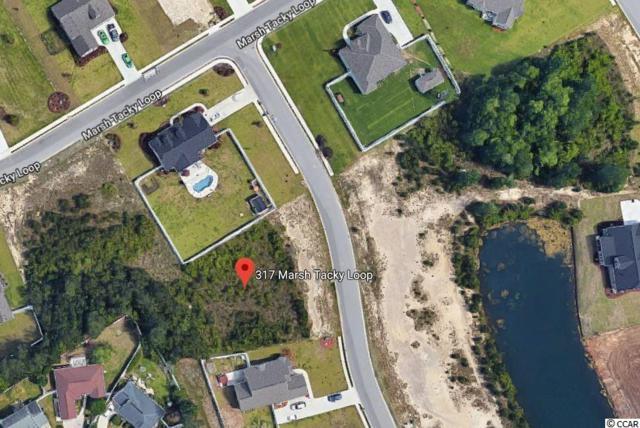 317 Marsh Tacky Loop, Myrtle Beach, SC 29588 (MLS #1906064) :: SC Beach Real Estate