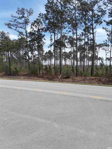 34.14 Acres Highway 17, McClellanville, SC 29458 (MLS #1906283) :: The Hoffman Group