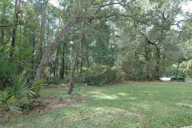 92 Old Carriage Loop, Georgetown, SC 29440 (MLS #1906314) :: Garden City Realty, Inc.